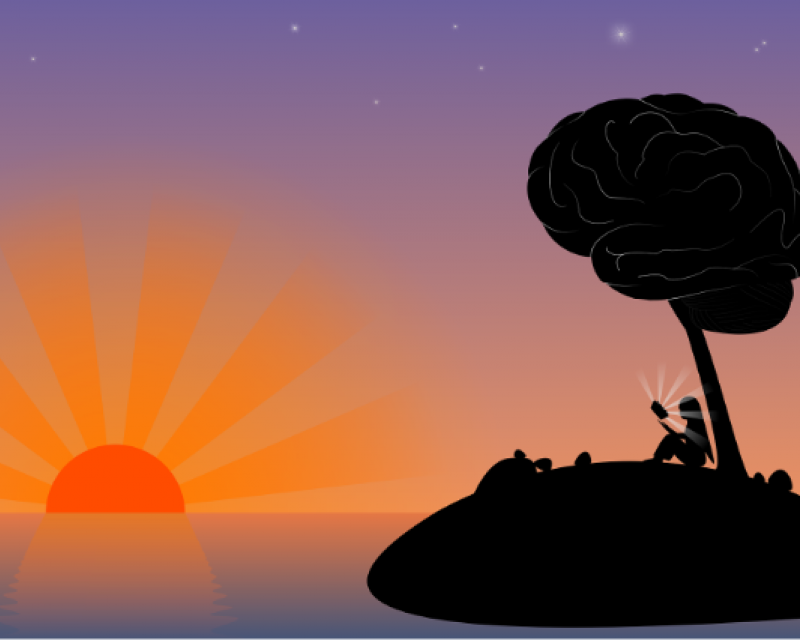 Person reading under a tree that resembles the shape of a human brain, with sunset in the background